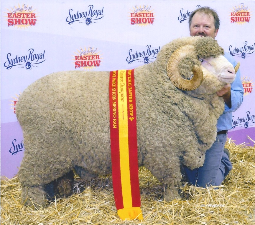 Sydney Royal Easter Show 2016