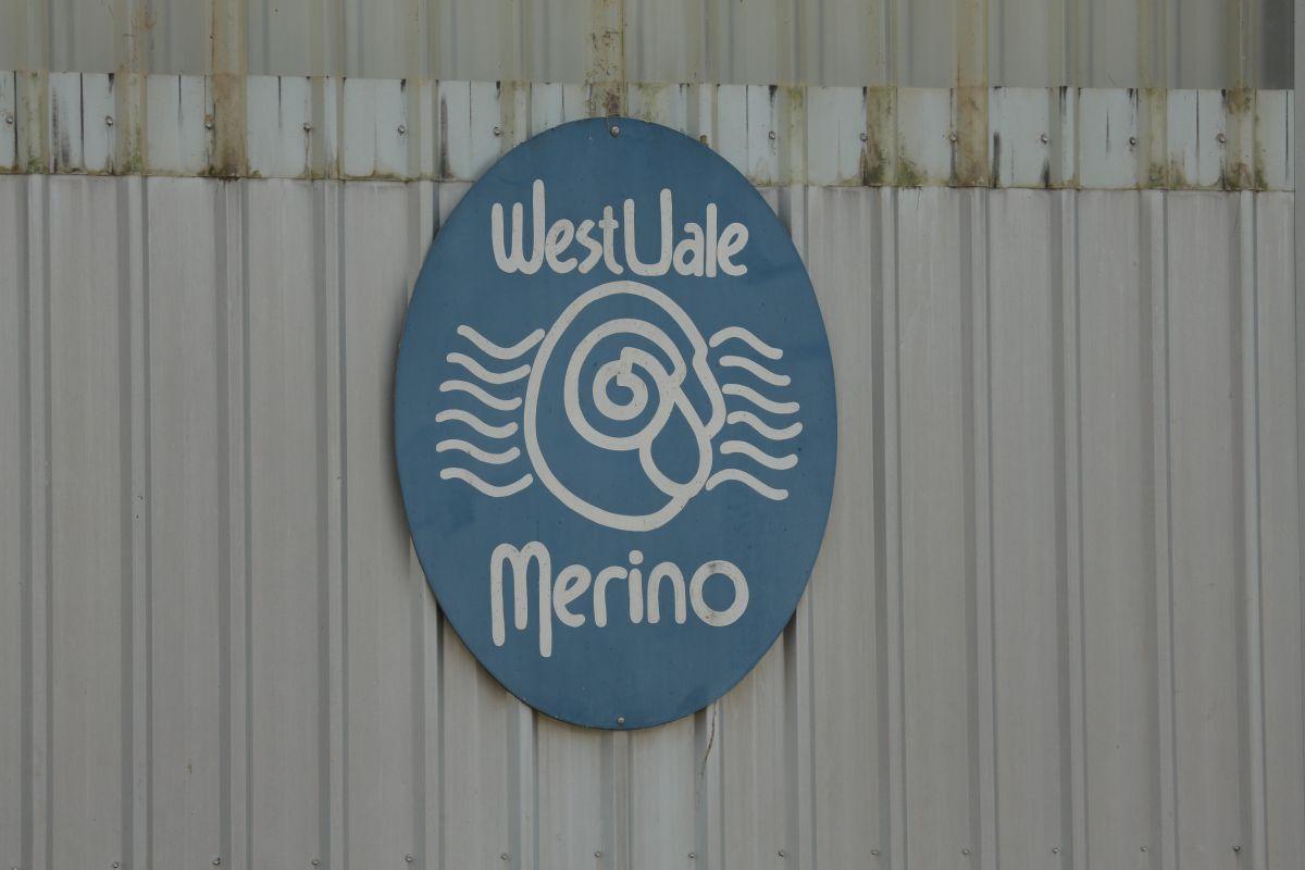 Westvale Merino