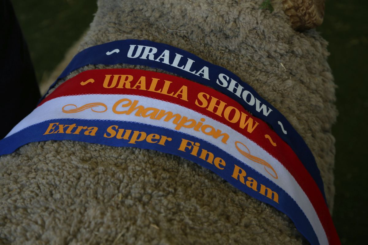 Uralla Show 2015